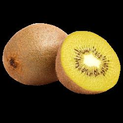 kiwi_icon